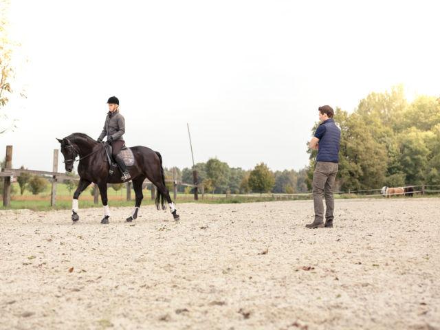 pferdepraxis-thalhauser_56.jpg